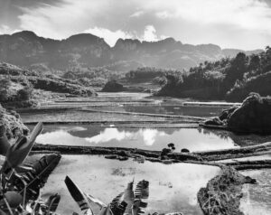 Fotogreportage van Hugo Wilmar in Oost-Java, begin juli 1947 in dienst van Spaarnestad
