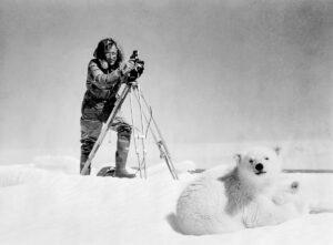 Hugo Wilmar films a Polar Bear with cubs